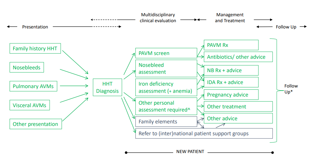 First two patient pathways for HHT and HTAD-WGs now available!