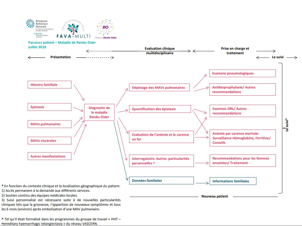 HHT Patient Pathway available in French
