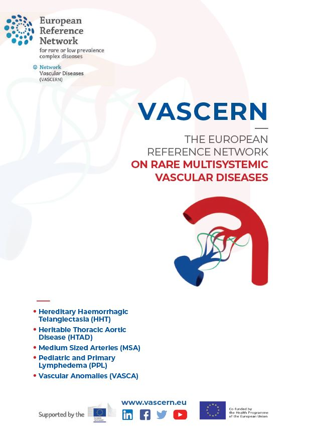 VASCERN leaflet now available!