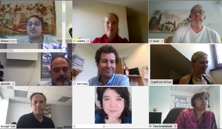 Recap of the Medium-Sized Arteries Working Group online meeting!