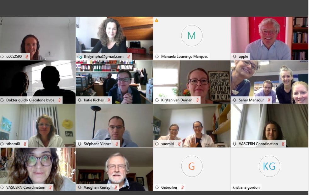 A look back at the Pediatric and Primary Lymphedema Working Group's 2-day Virtual Meeting!