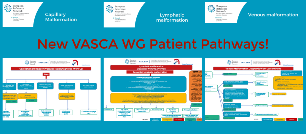 Capillary, Venous and Lymphatic Malformation Patient Pathways now available!