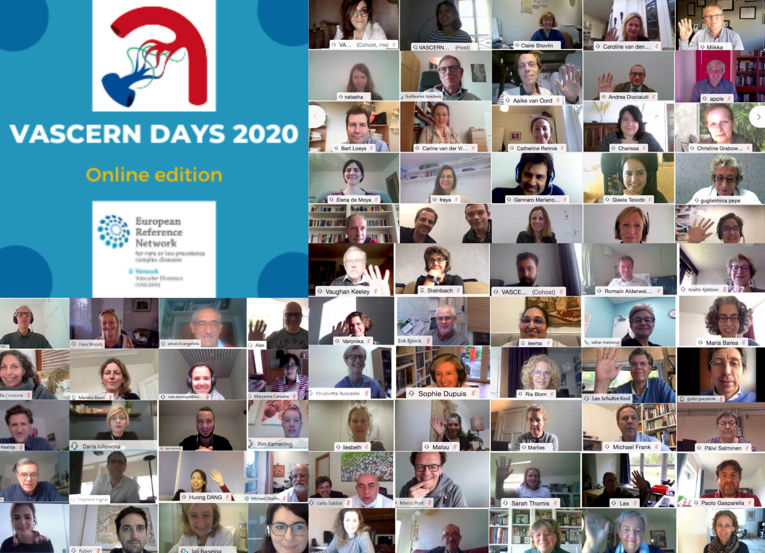 VASCERN Days 2020: accomplishment of our first online annual seminar!