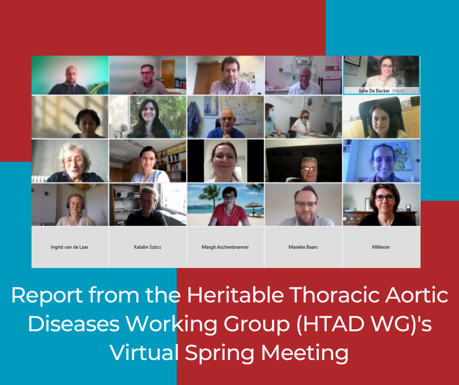 Report from the Heritable Thoracic Aortic Diseases Working Group (HTAD WG)'s Virtual Spring Meeting